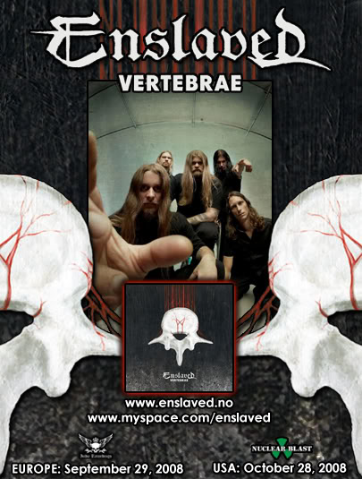 vertebrae_5